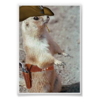 Gun Slinger Squirrel Poster