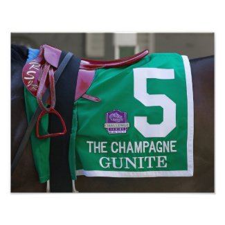 Gunite Saddlecloth Photo Print