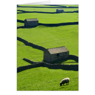 Gunnerside Barns, Yorkshire Dales Cards