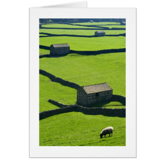 Gunnerside Barns, Yorkshire Dales Greeting Cards