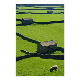 Gunnerside poster de los valles de Yorkshire
