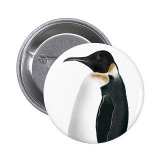 Gunter el pingüino pins