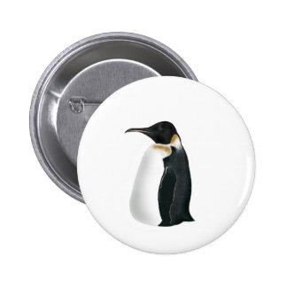 Gunter el pingüino