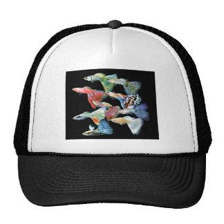 Guppies Hats