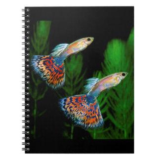 Guppies Notebook