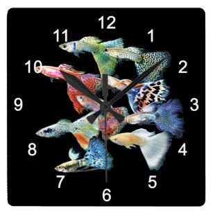 Guppies Square Wall Clock