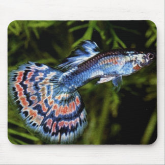 Guppy Mousepad Alfombrillas De Ratones