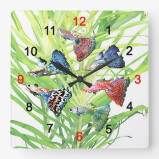 Guppy Square Wall Clock