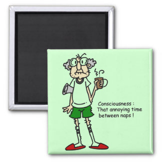 Gus on Naptime T-shirts and Gifts 2 Inch Square Magnet