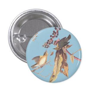 Gusano-Consumición del botón redondo del pájaro de Pin Redondo De 1 Pulgada