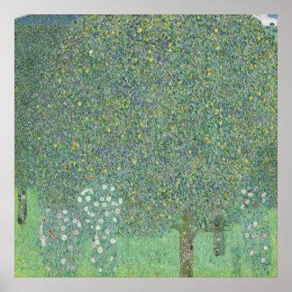 Gustav Klimt - Rosebushes under the Trees Poster
