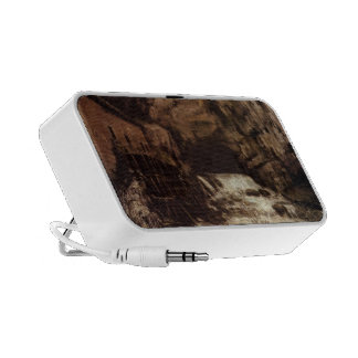 Gustave Courbet: The Source of the Loue Travel Speaker