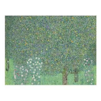Gustavo Klimt - Rosebushes debajo de los árboles Postal