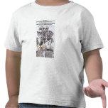 Gustavus Adolphus II y Gustavus Adolphus IV Camisetas
