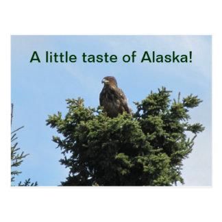 Gusto de Alaska Postal