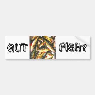 Gut Fish? Bumper Sticker