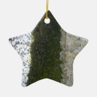 Gutter Trash -- Slime with concrete gutter. Double-Sided Star Ceramic Christmas Ornament