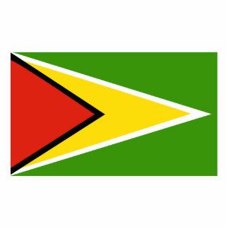 Guyana flag cutout