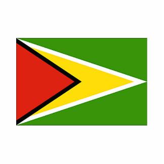 Guyana Flag Photo Cut-Out
