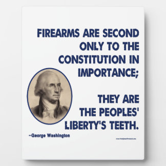 GW - Firearms Second only to the Constitution Plaque