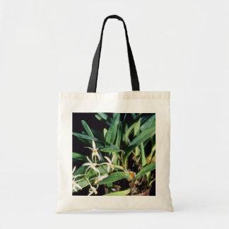 Gymbidioides (Epigeneium) flowers Budget Tote Bag