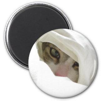 Gyoro The Ninja Kitty 2 Inch Round Magnet