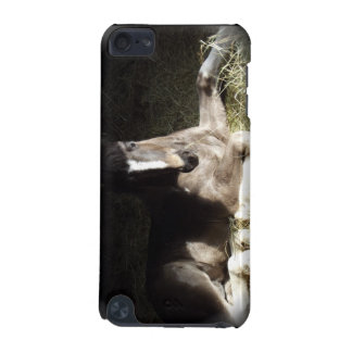 Gypsian Filly iPod Touch 5G Case