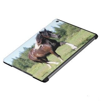 Gypsian Filly iPad Air Covers