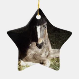 Gypsian Filly Ceramic Ornament