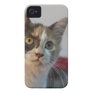 Gypsy Case-Mate iPhone 4 Case