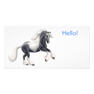 Gypsy Cob Horse Photo Card