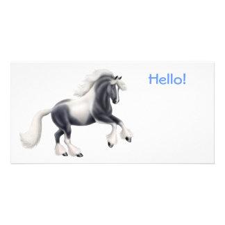 Gypsy Cob Horse Photo Card