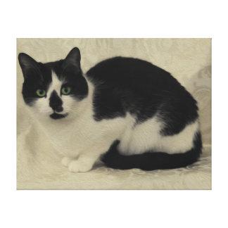 Gypsy Da Fleuky Cat Canvas