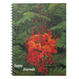 Gypsy Journal Bird of Paradise