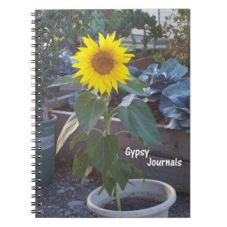 Gypsy Journal Sun in a Pot