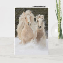 Gypsy Mare and Foal Run Horse Greeting Card