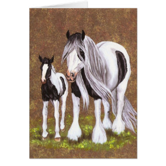 Gypsy Mare Foal Cards