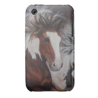 Gypsy Mare iPhone 3 Cases