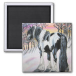 gypsy vanner 2 inch square magnet