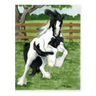 Gypsy Vanner at play Horse Art Postcard