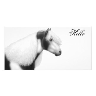 Gypsy Vanner Cob Horse Photo Card