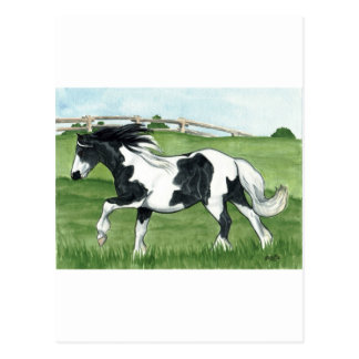 Gypsy Vanner Galloping Postcards