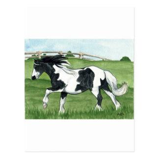 Gypsy Vanner Galloping Postcard