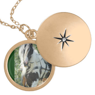 Gypsy Vanner Gold Plated Necklace