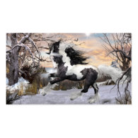 Gypsy Vanner Horse Business Cards