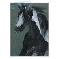 Gypsy Vanner Horse Card