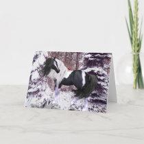 Gypsy Vanner Horse & Cardinals Greeting Card