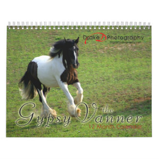 Gypsy Vanner Horses Calendar