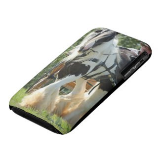 Gypsy Vanner iPhone 3 Case-Mate Case