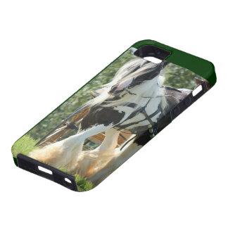 Gypsy Vanner iPhone SE/5/5s Case